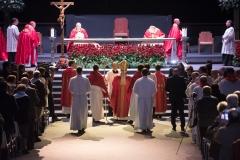 Beatificación-mártires-vicencianos-2017-18