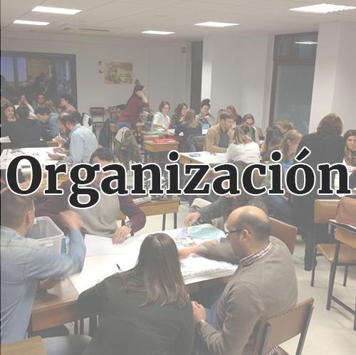 enseñanza-organizacion
