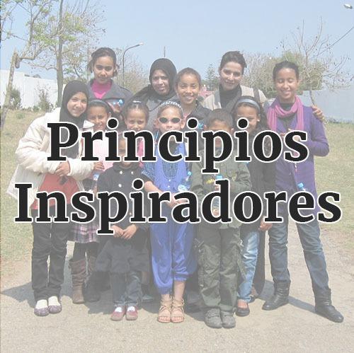 misión-adgentes-principios